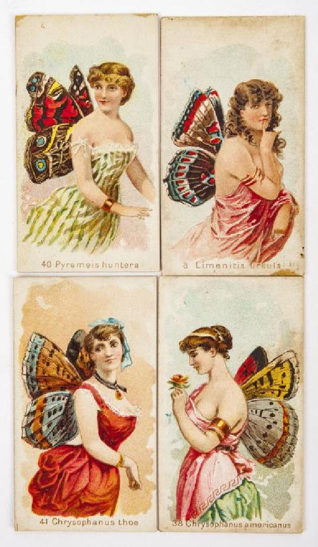 15 Wm. S. Kimball & Co's Butterfly Cigarette Cards - 2