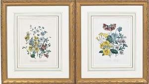 Pair Hand Colored Botanical Bookplates