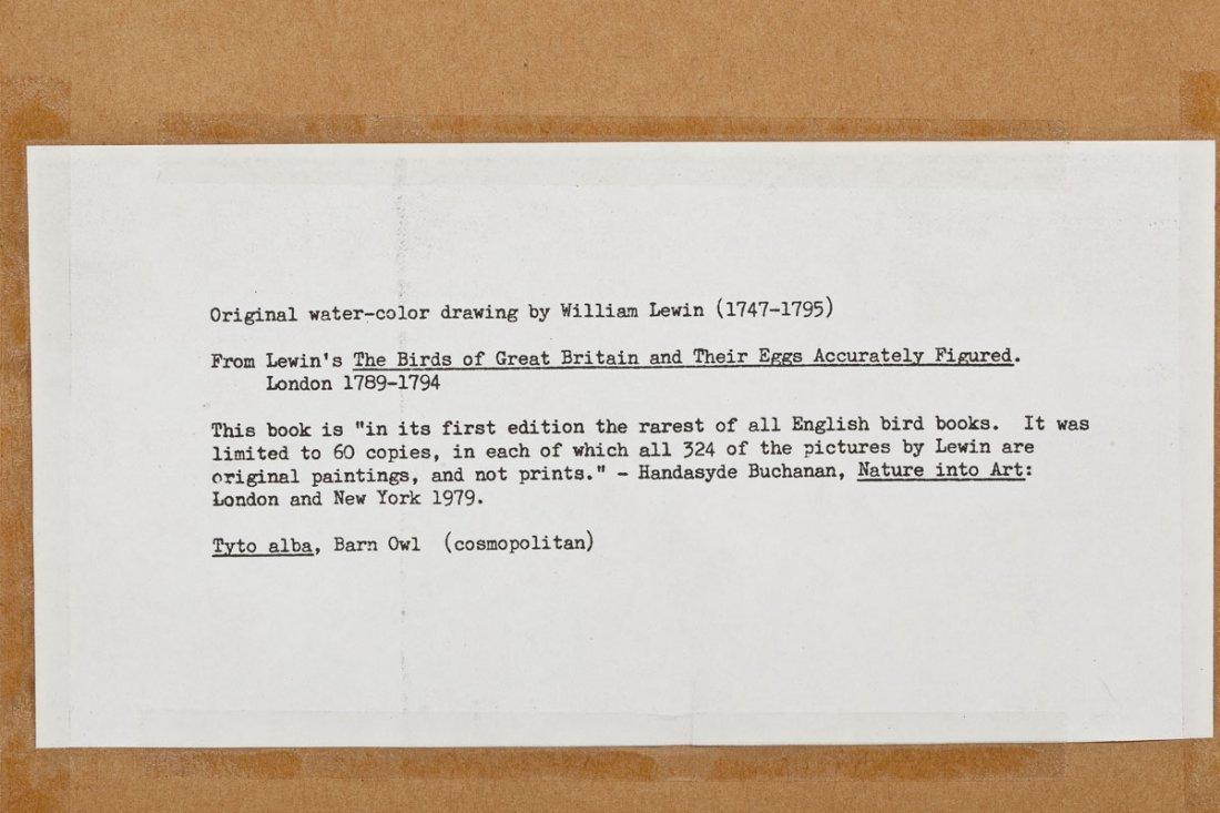 2 William Lewin Owl Watercolors & Joseph Smit Wren Lith - 10