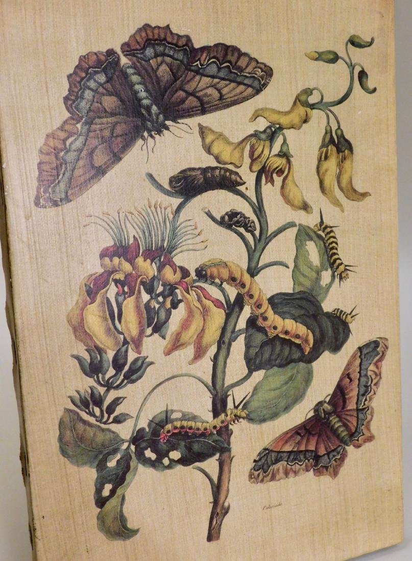 Botanical Caterpillar Butterfly Wall Plaque Made in - 2