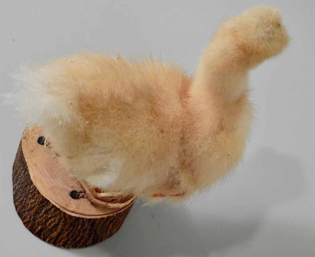 Fluffy Duckling Vintage Taxidermy - 3
