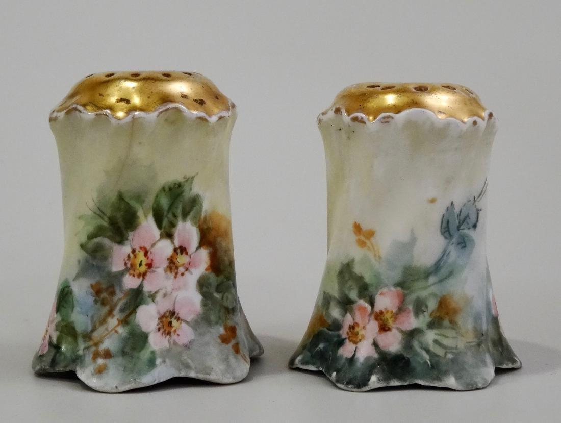 Hand Painted Art Nouveau Porcelain Salt Pepper Shakers