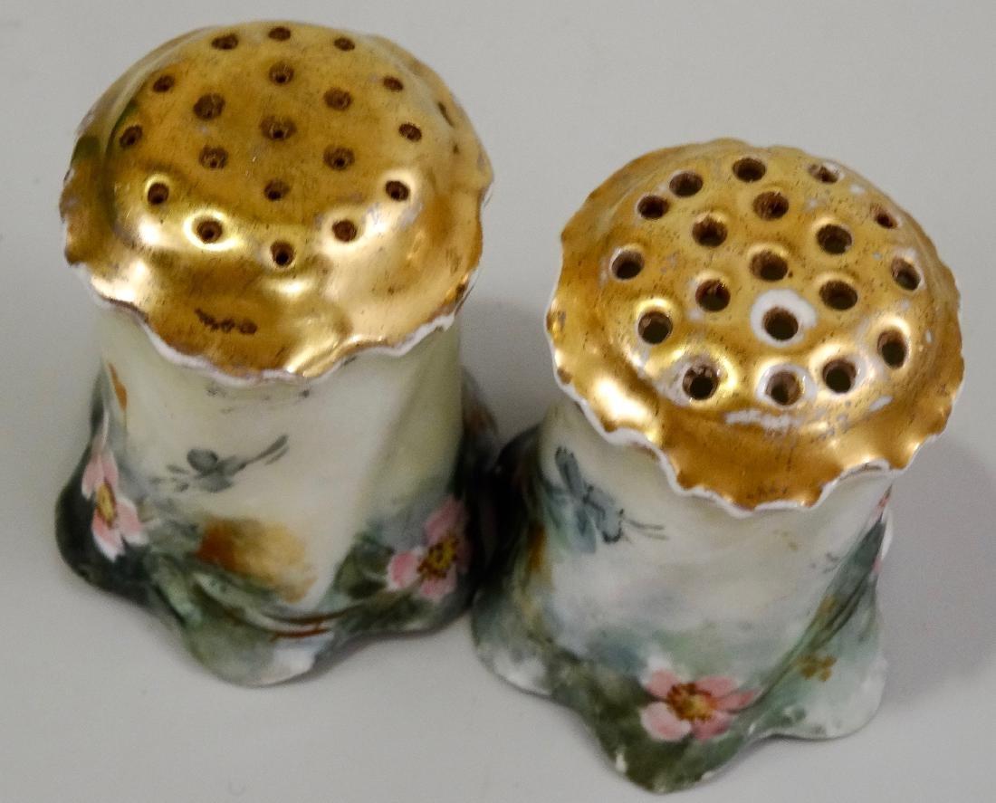 Hand Painted Art Nouveau Porcelain Salt Pepper Shakers - 6