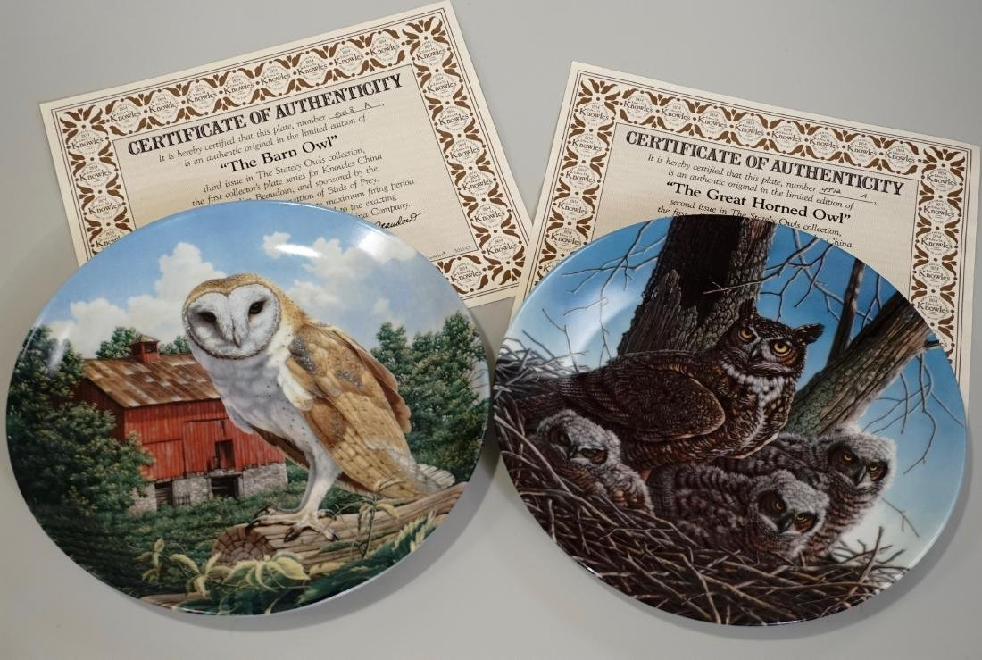 Colector Owl Porcelain Plate Knowles China Lot of 2