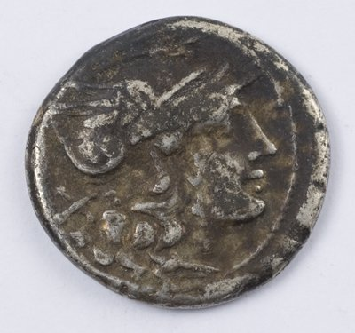 505: Roman Republic, AR denarius