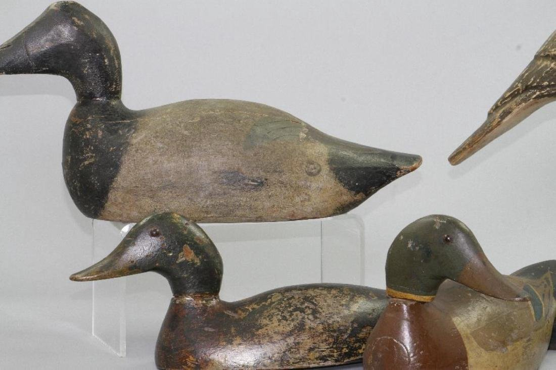 THREE AMERICAN PAINTED DECOYS, AND A SHORE BIRD, 20THC. - 4