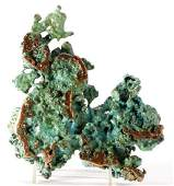 Natural History - Turquoise Nugget