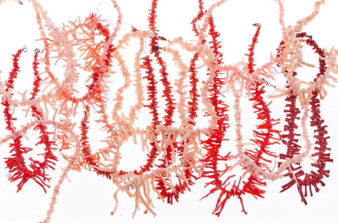 Collection of 14 coral necklaces