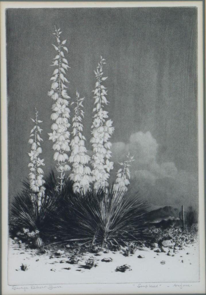 GEORGE ELBERT BURR (1859 - 1939)