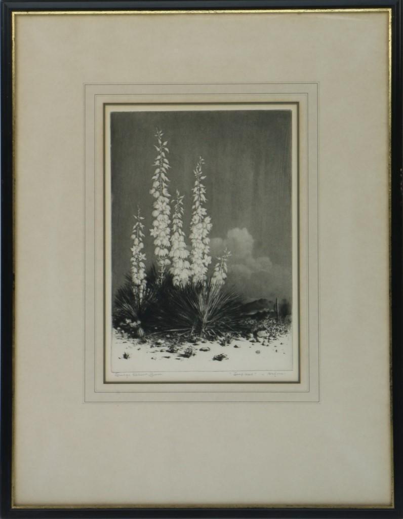GEORGE ELBERT BURR (1859 - 1939) - 2