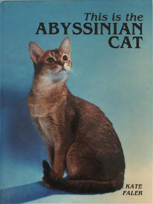 This is an Abyssinian Cat