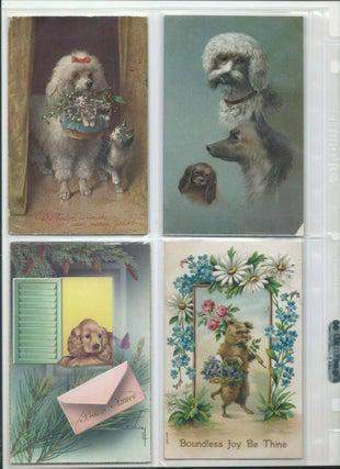 Postcards of Dogs (Lot of 36)