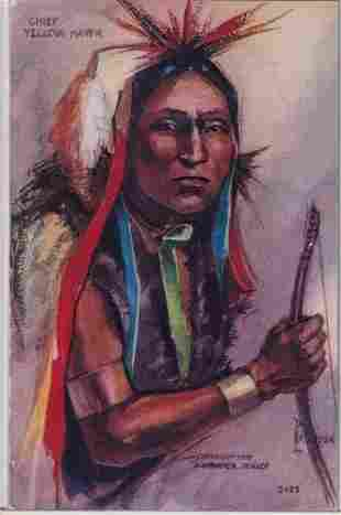 Chief Yellow Hawk