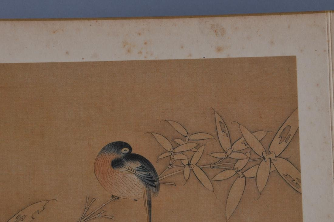 Album of paintings. China. Early 20th century. Ten - 9