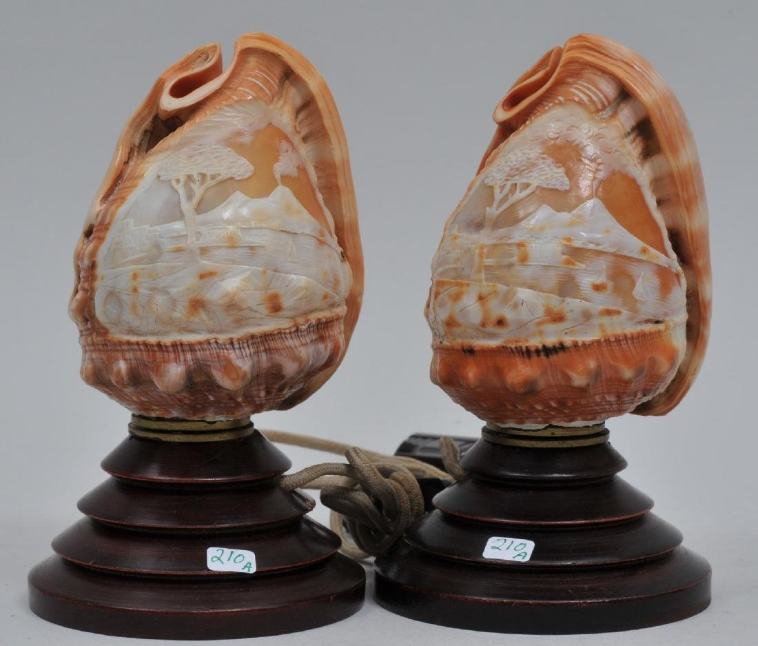 Pair of Italian early 20th century Cameo carved sea