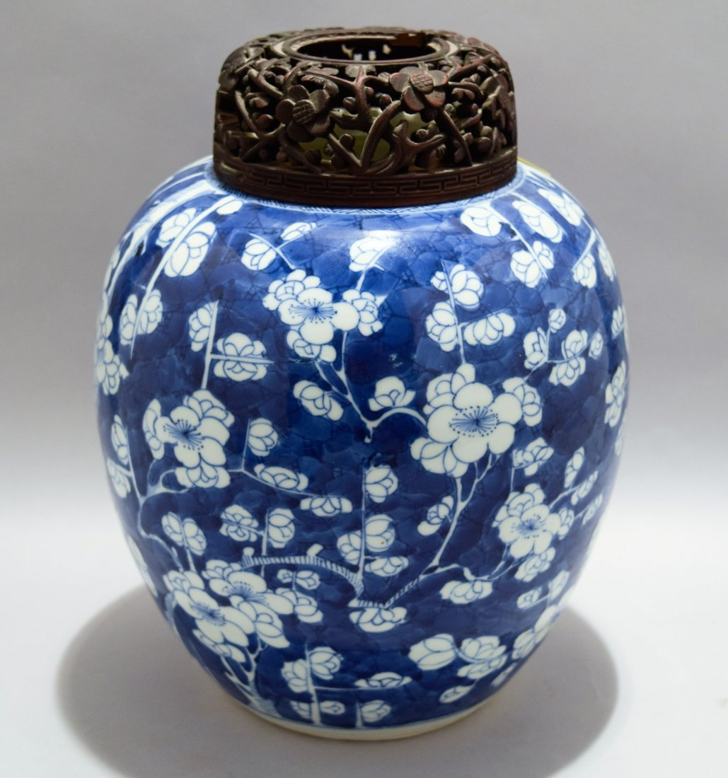 Porcelain jar. China. K'ang hsi period (1662-1722).