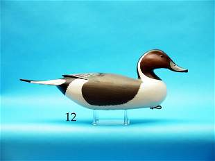 FINE PINTAIL DRAKE by Clarence Fennimore,  Wrightstown,