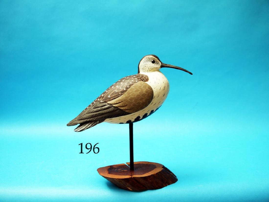 DUNLIN by Ronald Sabatini, Levittown,  PA. Oversized