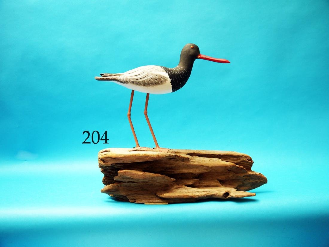 FINE OYSTER CATCHER by John and  Patty Waterfield,