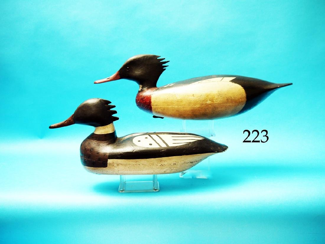TWO RED-BREASTED MERGANSERS.  The first is by John