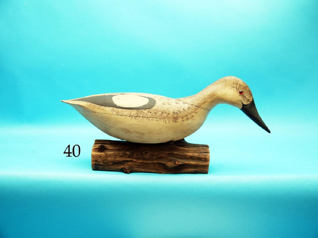 VERY RARE CONFIDENCE DECOY, probably a gannet, by