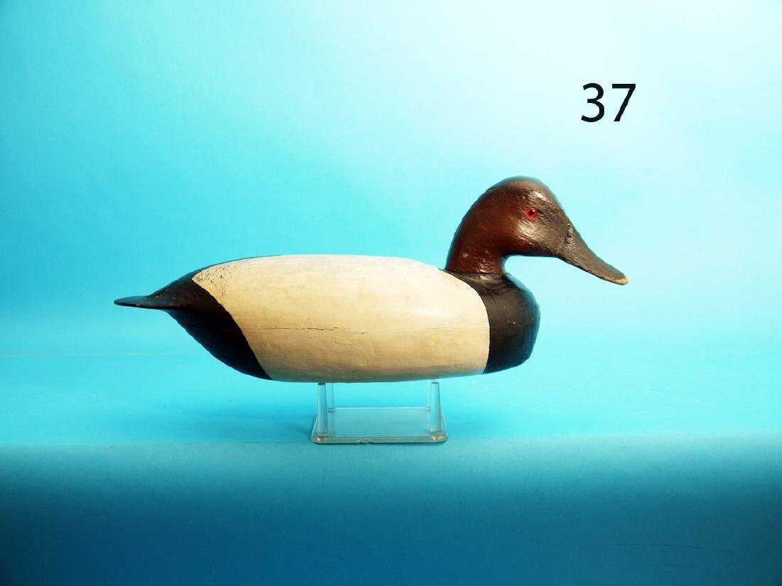 VERY EARLY CANVASBACK DRAKE by Hurley Conklin,