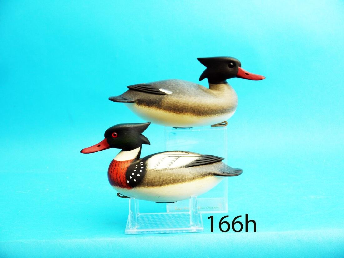 VERY FINE PAIR OF ONE-THIRD SIZE RED-BREAST MERGANSERS