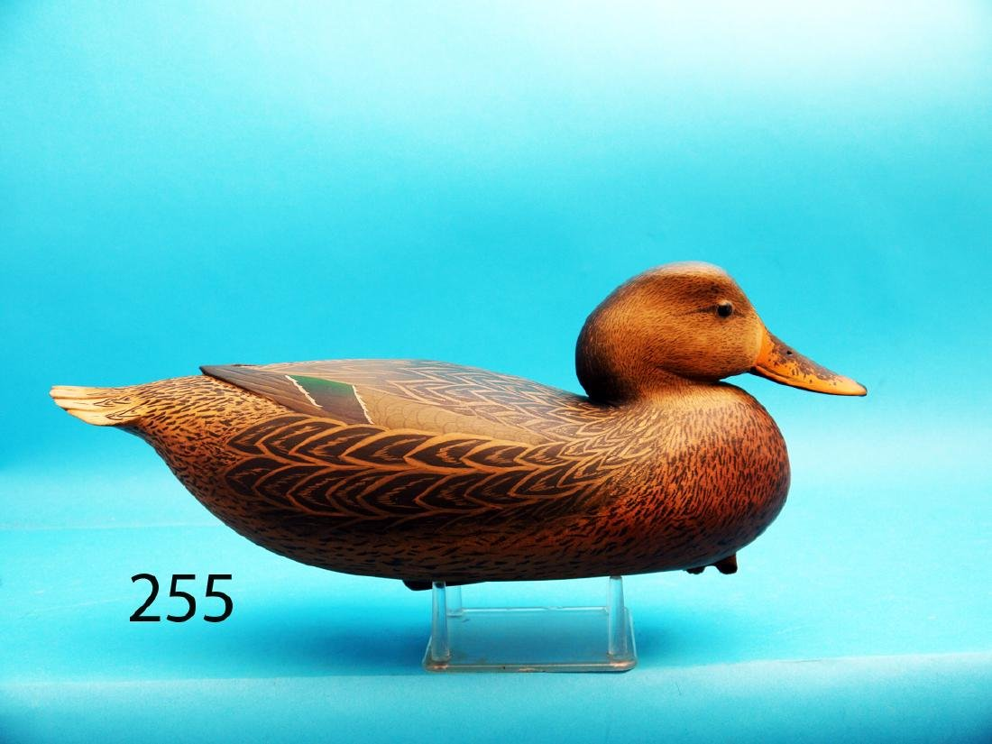 VERY FINE MALLARD HEN by Bob White, Tullytown, PA.