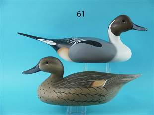 PINTAIL PAIR, B. SCHAUBER