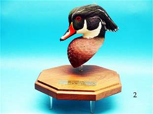 COMPETITION WOOD DUCK DRAKE HEAD by Brian F. Matyola.