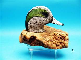 DETAILED WORLD CLASS COMPETITION CARVING OF A WIDGEON