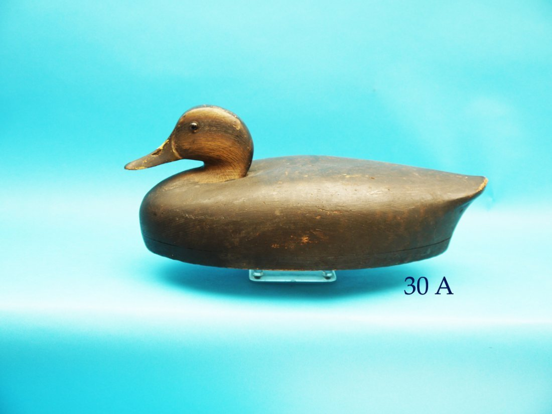 VERY EARLY AND RARE BLACK DUCK by the Wildfowler Decoy