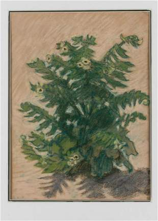 Ludwig von Hofmann Untitled Blooming Thistle 1890c