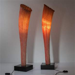 Ayala Serfaty, 2 'Horn Flame' floorlamps from the