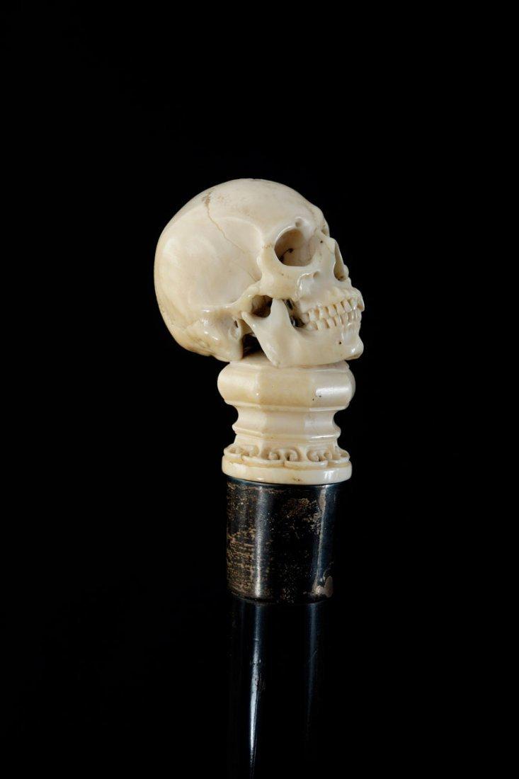 Walking stick. Carved skull on a base. Ivory, silver - 2