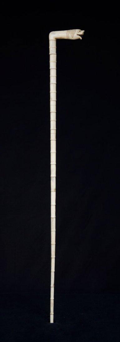 Walking stick, dog's head. Ivory vertebra sections. L. - 2