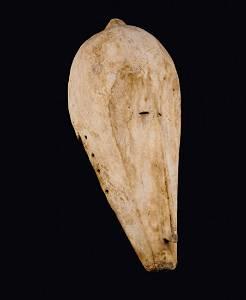 Gabun. Fang. Mask of the 'ngil' secret society with an