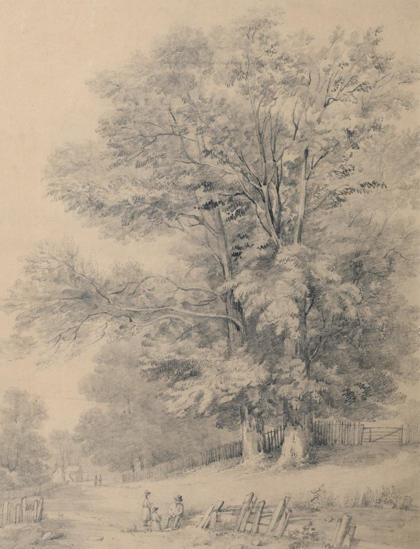 McKenzie M.J., a forest view at Berley (Kent), pencil