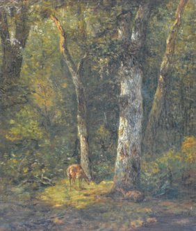 Unsigned, Deer In A Forest, Oil On Panel, 26 X 29,5 Cm