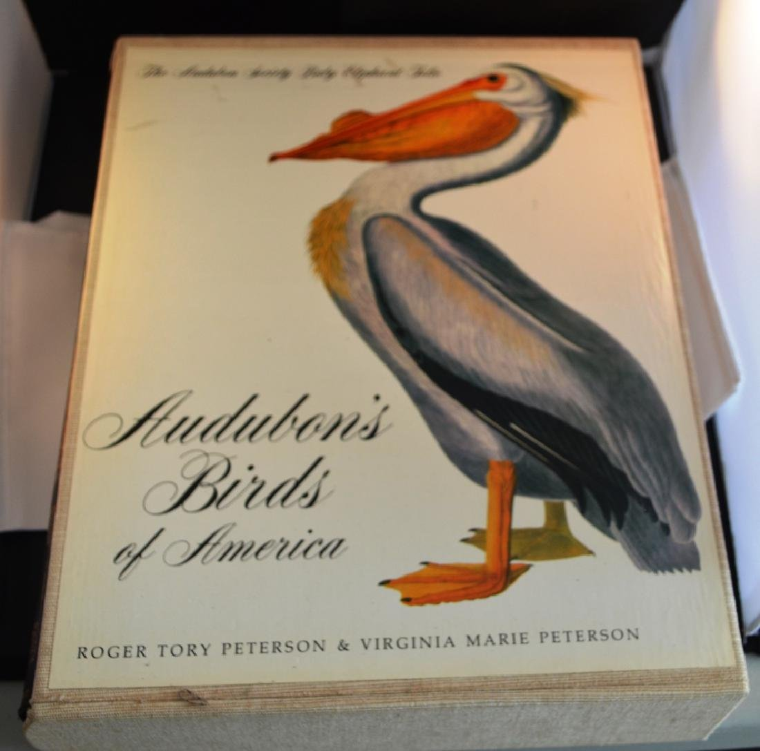 Audobons Birds of America Book  Peterson