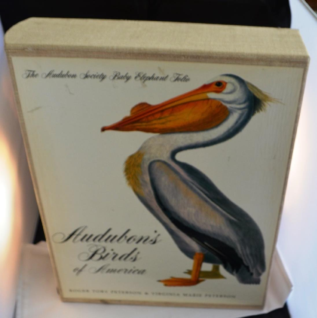 Audobons Birds of America Book  Peterson - 2