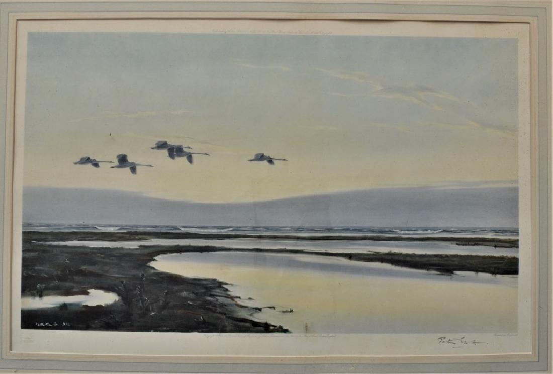 1936 Peter Scott Geese Litho signed Peter Scott - 2