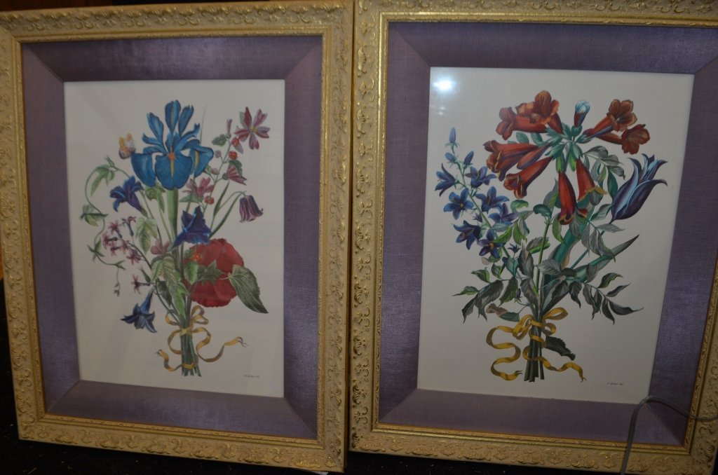 Pair of Botanical Engravings Nicholas Robert