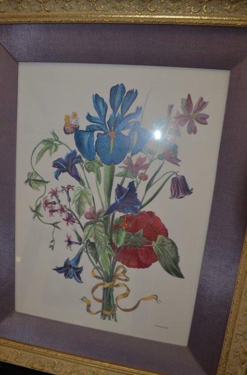 Pair of Botanical Engravings Nicholas Robert - 2