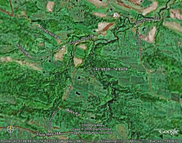 16: TOWN OF DANUBE (HERKIMER CO., NY) 40 acres.