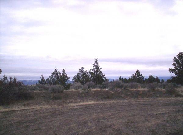 6. ALTURAS AREA (MODOC CO., CA) 1.2 acres.