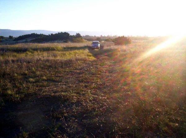 12. MADELINE/TERMO AREA (LASSEN CO., CA) 40 acres.