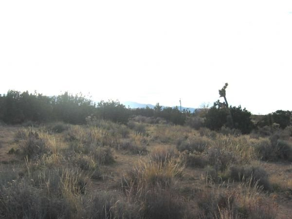 13. VALYERMO AREA (LOS ANGELES CO., CA) 2.5 acres.