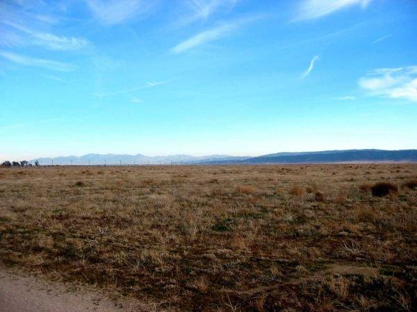 15. ANTELOPE ACRES AREA (LOS ANGELES CO., CA) 1.3 acres