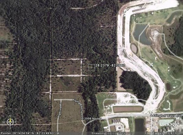 102229: 229. TAMPA DOWNS RANCHETTES (PASCO CO., FL) 1 l
